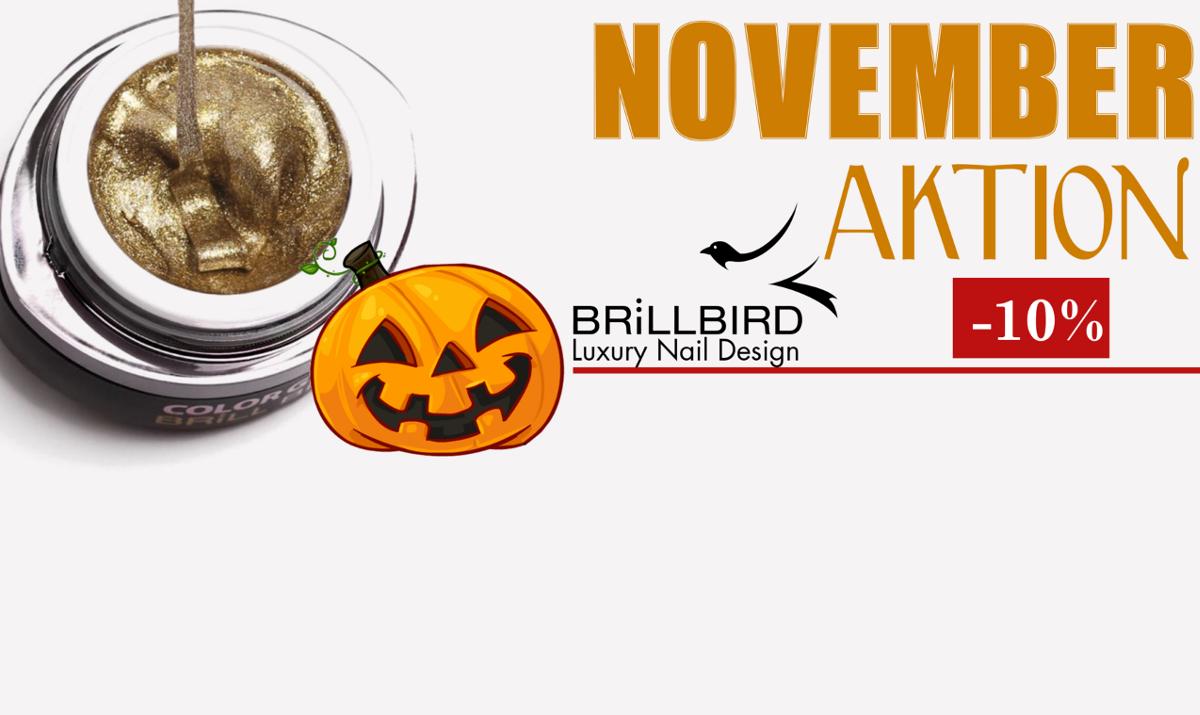 November Aktion